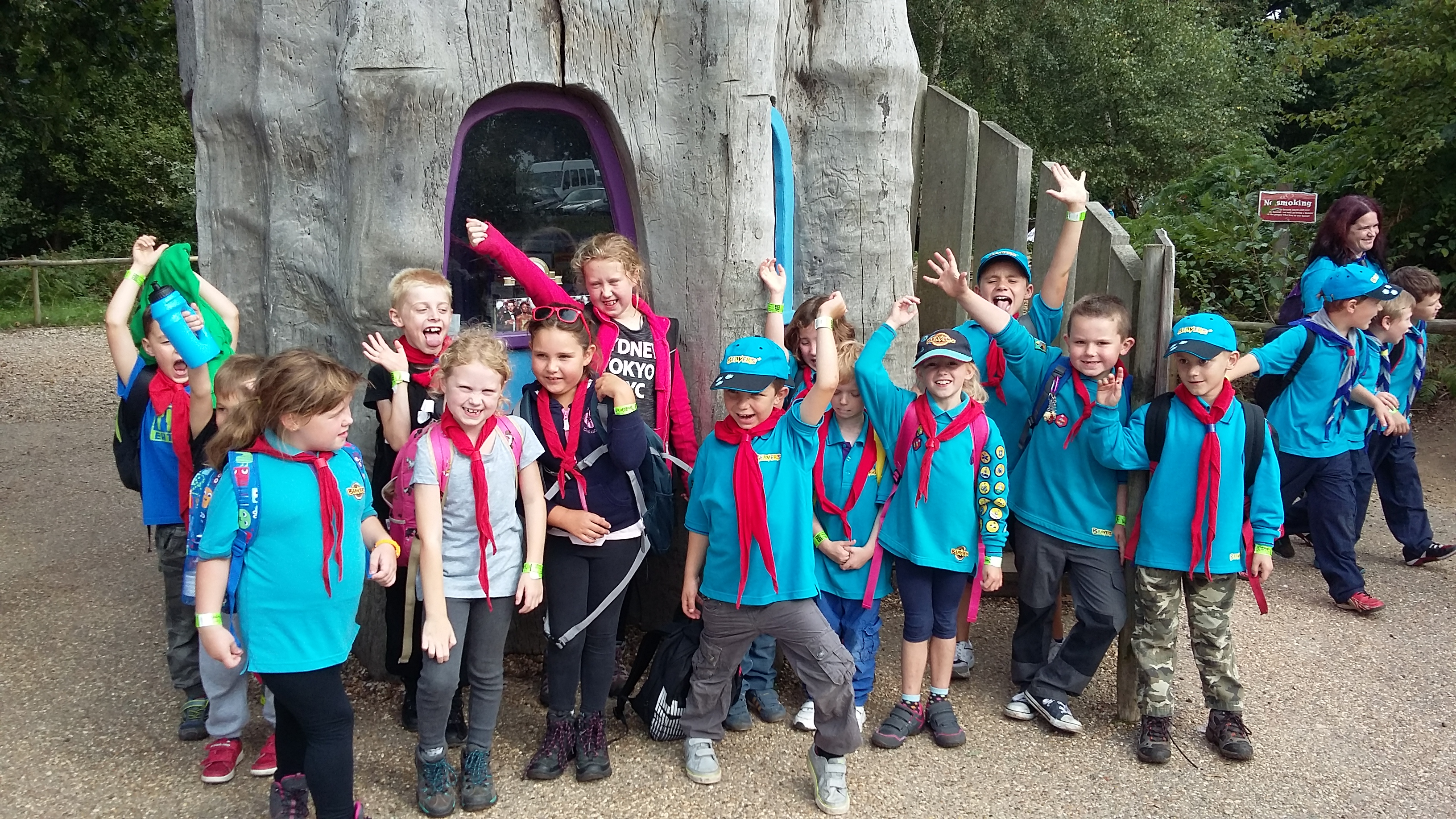 Beavers at BeWILDerwood 2016